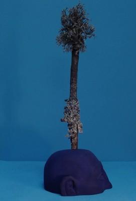 Tête arbre 2